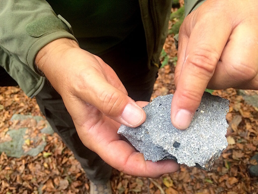 Anhand von Steinen erklärt der Geologe Sven von Loga die vulkanische Vergangenheit des Siebengebirges