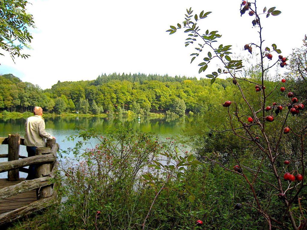 Top 5 – Die schönsten Eifel-Erlebnisse Eifelmaar Vulkaneifel